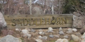 Saddlehorn community sign